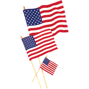 US 12X18IN. COTTON FLAG (12/CASE) PARTY SUPPLIES
