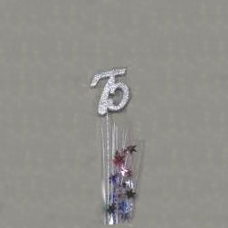 Click For Larger Picture Of 75TH SILVER STAR SPRAY DECORATION PARTY SUPPLIES