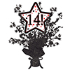 14! BLACK STAR CENTERPIECE PARTY SUPPLIES