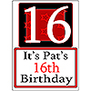 PERSONALIZED 16 YEAR OLD YARD SIGN PARTY SUPPLIES