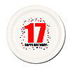 17TH BIRTHDAY DESSERT PLATE 8-PKG PARTY SUPPLIES