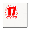 17TH BIRTHDAY LUNCHEON NAPKIN 16-PKG PARTY SUPPLIES
