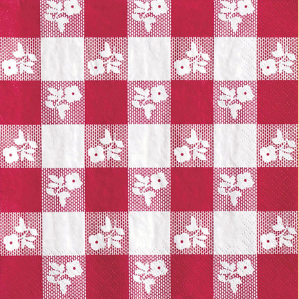 Click for larger picture of RED GINGHAM BEVERAGE NAPKINS (50 CT.) PARTY SUPPLIES