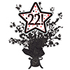 22! BLACK STAR CENTERPIECE PARTY SUPPLIES