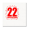 22ND BIRTHDAY LUNCHEON NAPKIN 16-PKG PARTY SUPPLIES