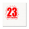 23RD BIRTHDAY LUNCHEON NAPKIN 16-PKG PARTY SUPPLIES