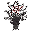 25! BLACK STAR CENTERPIECE PARTY SUPPLIES
