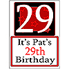 PERSONALIZED 29 YEAR OLD YARD SIGN PARTY SUPPLIES
