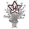 34! SILVER STAR CENTERPIECE PARTY SUPPLIES