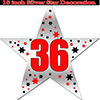36TH SILVER STAR DECORATION PARTY SUPPLIES