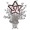 37! SILVER STAR CENTERPIECE PARTY SUPPLIES