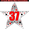 37TH SILVER STAR DECORATION PARTY SUPPLIES