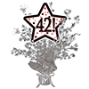 42! SILVER STAR CENTERPIECE PARTY SUPPLIES