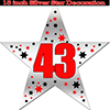 43RD SILVER STAR DECORATION PARTY SUPPLIES