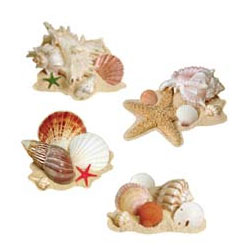 SEASHELL DURA-SHIELD CUTOUTS 17IN. PARTY SUPPLIES