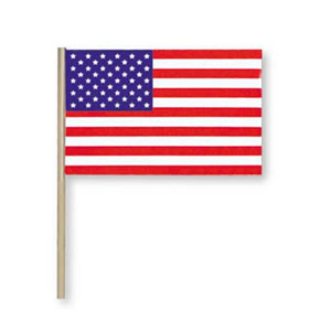 PLASTIC AMERICAN FLAG (ALL-WEATHER) 4X6I PARTY SUPPLIES