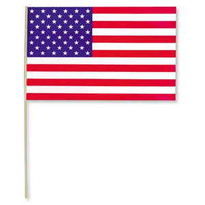 PLASTIC AMERICAN FLAG ALL-WEATHER 11