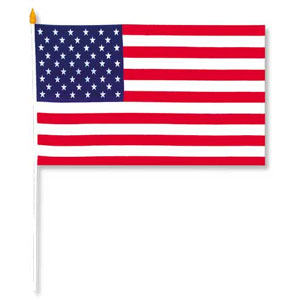 RAYON AMERICAN FLAG 11IN.X18IN. (1/PKG) PARTY SUPPLIES