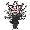 53! BLACK STAR CENTERPIECE PARTY SUPPLIES
