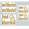 JUST MARRIED AUTO CLINGS PARTY SUPPLIES