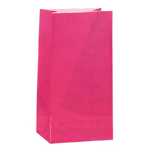 Click for larger picture of HOT PINK PAPER PARTY BAGS PARTY SUPPLIES