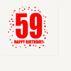 59TH BIRTHDAY LUNCHEON NAPKIN 16-PKG PARTY SUPPLIES