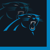 CAROLINA PANTHERS BEVERAGE NAP PARTY SUPPLIES