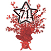 71! RED STAR CENTERPIECE PARTY SUPPLIES