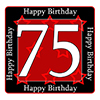 75TH BIRTHDAY COASTER PARTY SUPPLIES