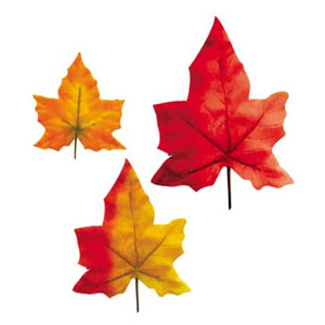 AUTUMN LEAVES (3IN.-8IN. - 8/PKG) PARTY SUPPLIES