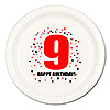 9TH BIRTHDAY DINNER PLATE 8-PKG PARTY SUPPLIES