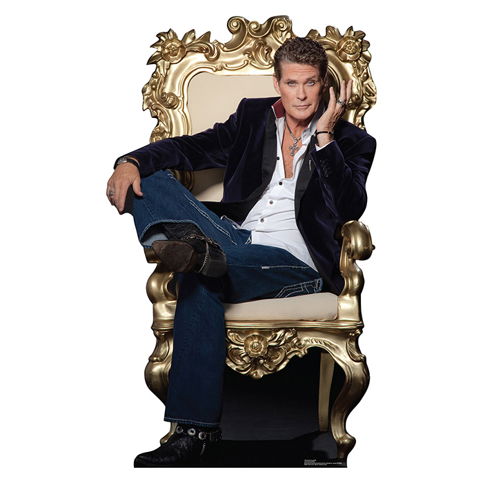 DAVID HASSELHOFF PARTY SUPPLIES