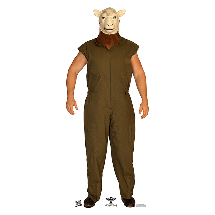 ERICK ROWAN - WWE PARTY SUPPLIES
