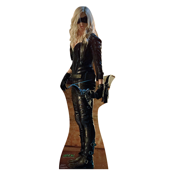 SARA LANCE BLACK CANARY (ARROW) PARTY SUPPLIES