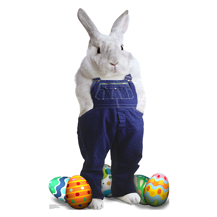 EASTER BUNNY OVERALLS PARTY SUPPLIES