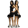 THE BELLA TWINS - WWE LIFE SIZE STANDUP PARTY SUPPLIES