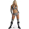 MICHELLE MCCOOL - WWE LIFE SIZE STANDUP PARTY SUPPLIES