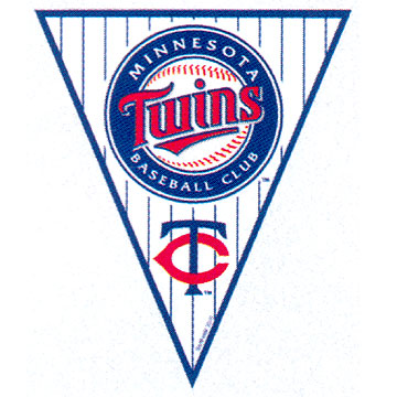 Click for larger picture of DISCONTINUED TWINS PENNANT BANNER PARTY SUPPLIES