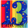 A YEAR TO CELEBRATE 13TH BEVERAGE NAPKIN PARTY SUPPLIES