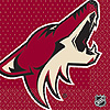 PHOENIX COYOTES LUNCHEON NAPKIN PARTY SUPPLIES