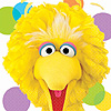 SESAME STREET PARTY BIG BIRD LUNCH NAPKN PARTY SUPPLIES