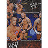 WWE TABLECOVER PARTY SUPPLIES