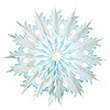 DIP-DYED SNOWFLAKES PARTY SUPPLIES