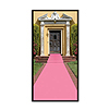 PINK CARPET RUNNER PARTY SUPPLIES