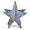 3-D PRISMATIC SILVER STAR CENTERPIECE PARTY SUPPLIES