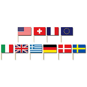 International party supplies international flag picks for International party decor