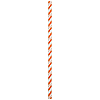 ORANGE-WHITE PAPER STRAWS (144/CS) PARTY SUPPLIES