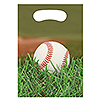 SPORTS FANATIC BASEBALL TREAT BAG PARTY SUPPLIES
