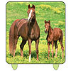 DISCONTINUED WILD HORSES PRINTED CANDLE PARTY SUPPLIES