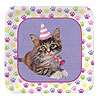 PURR-TY TIME! DESSERT PLATES (96/CS) PARTY SUPPLIES